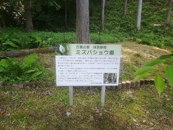 ajimanoen-takefu-016.jpg