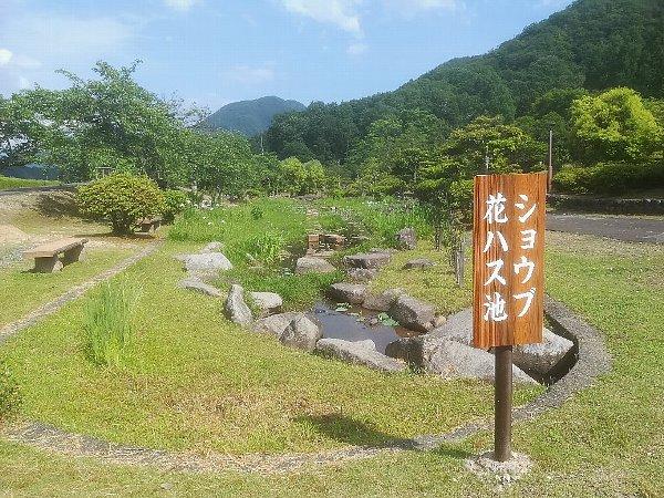ajimanoen-takefu-032.jpg