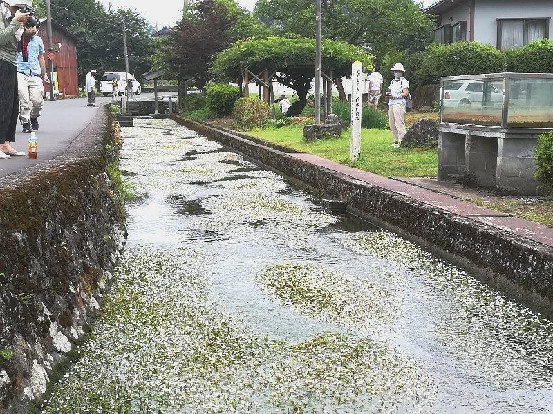 baikasou2-takefu-013.jpg