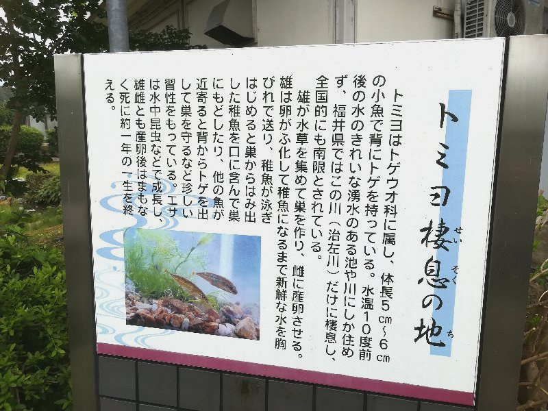 baikasou2-takefu-022.jpg