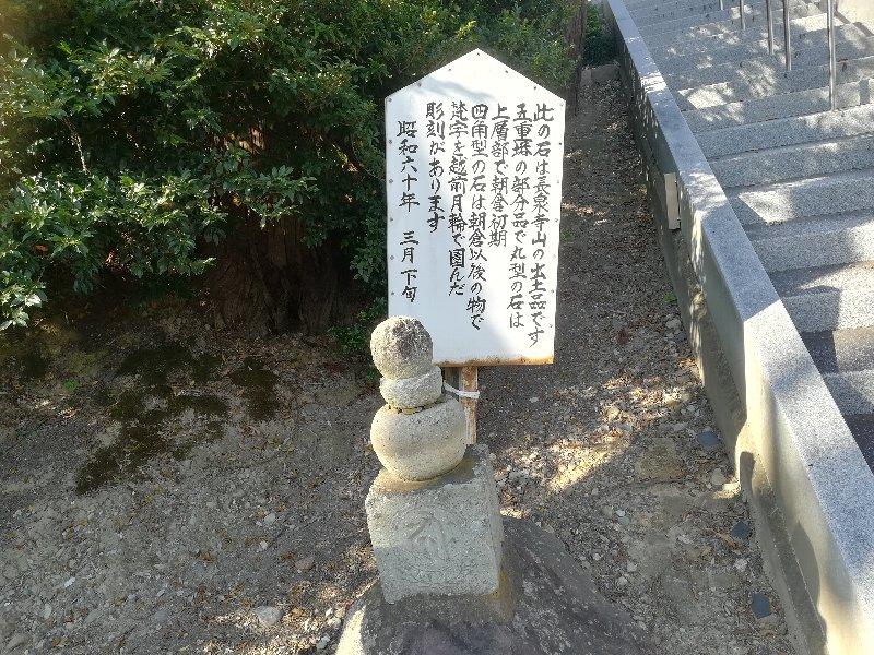 chudouin-sabae-003.jpg