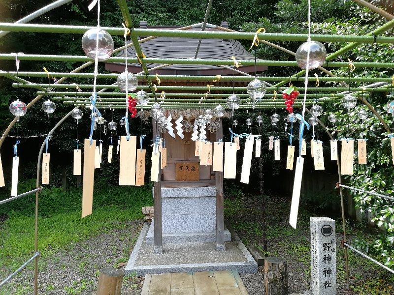 fujishimajnjya-fukui-022.jpg