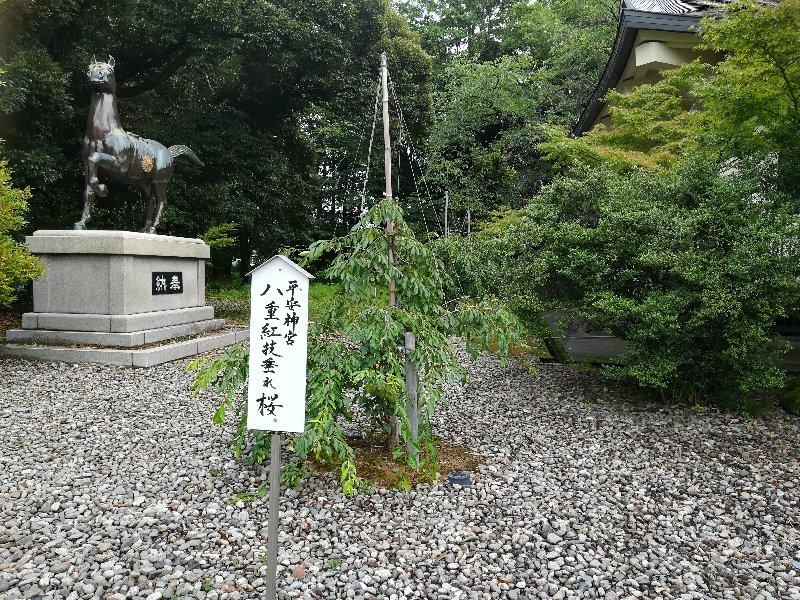 gokokujinjya-fukui-010.jpg