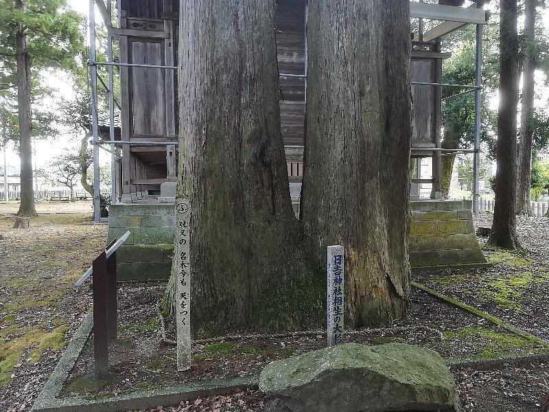 hiyoshijinjya-sabae-025.jpg