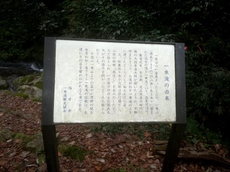 ichijodaki2-fukui-006.jpg