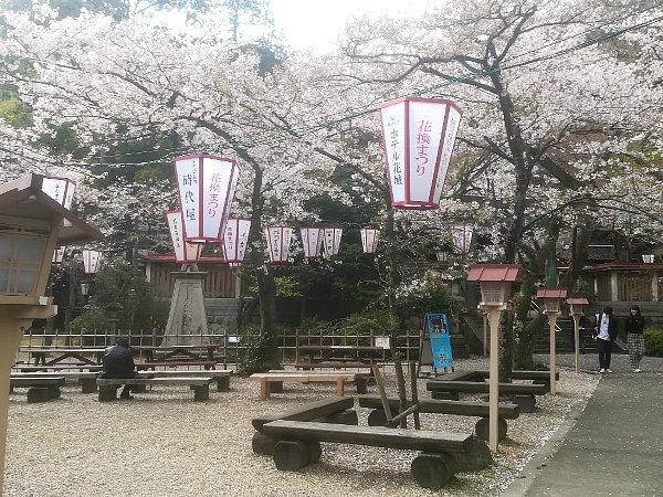 kanakasakigu4-tsuruga-015.jpg