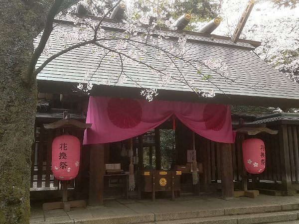 kanakasakigu4-tsuruga-038.jpg