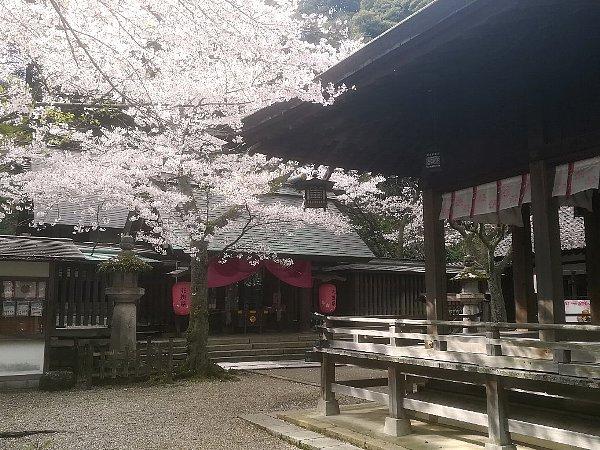 kanakasakigu4-tsuruga-042.jpg