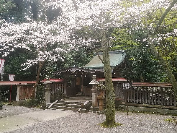 kanakasakigu4-tsuruga-043.jpg
