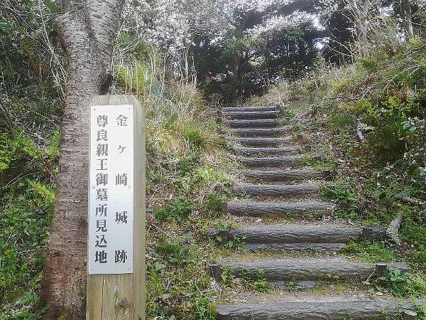 kanakasakigu4-tsuruga-049.jpg