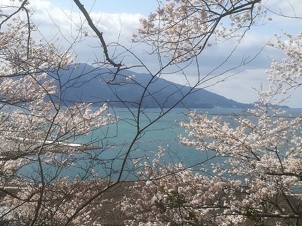 kanakasakigu4-tsuruga-055.jpg