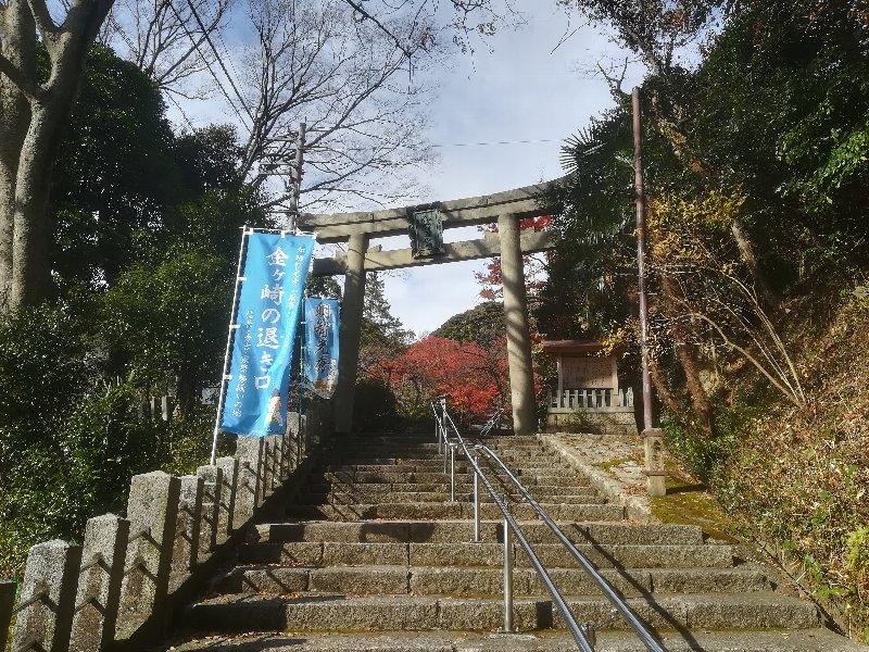 kanakasakigu5-tsuruga-001.jpg
