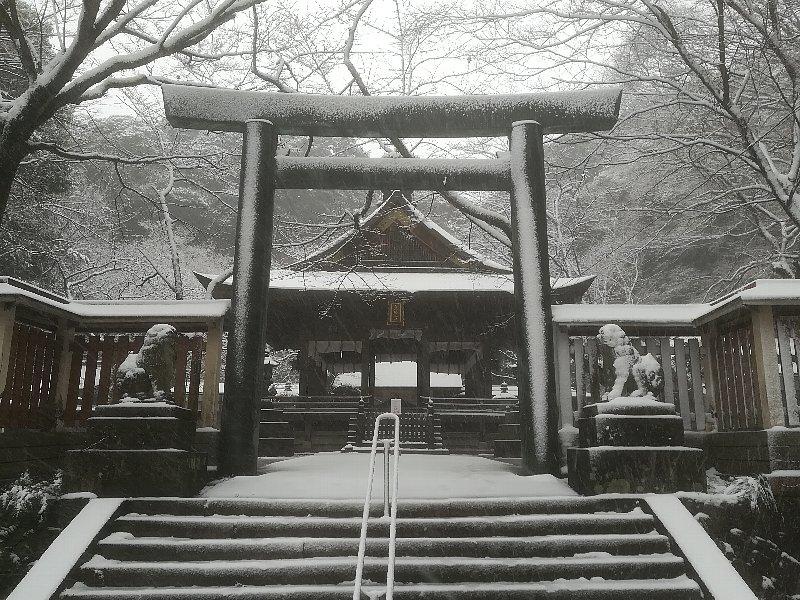 kanakasakigu6-tsuruga-014.jpg