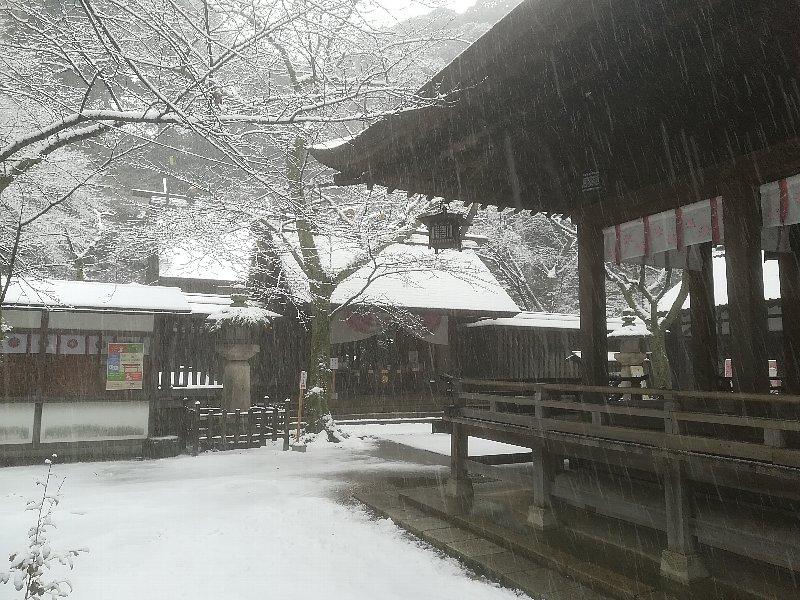 kanakasakigu6-tsuruga-018.jpg