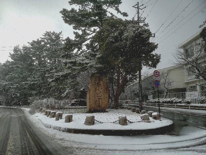 matsubara2-tsuruga-025.jpg