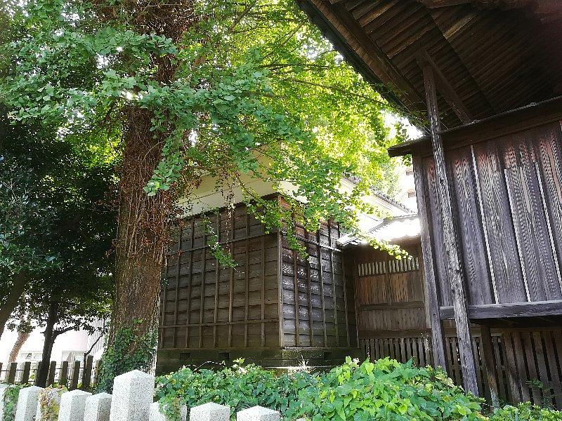 matsuokajinjya-sabae-012.jpg