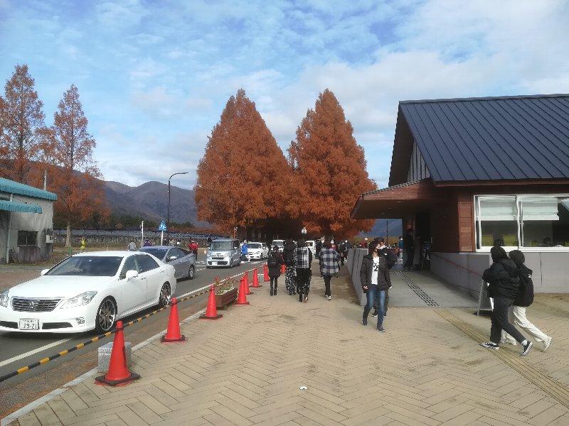 metasekoiya5-makino-041.jpg