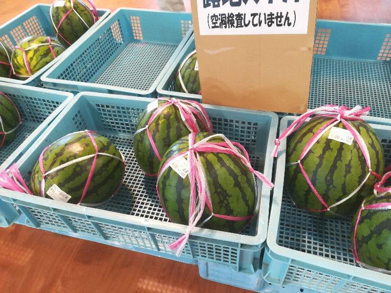 michinoeki-mikuni-002.jpg