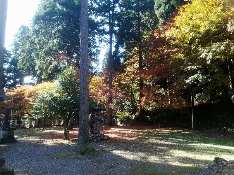 okafuto2-awatabe-009.jpg