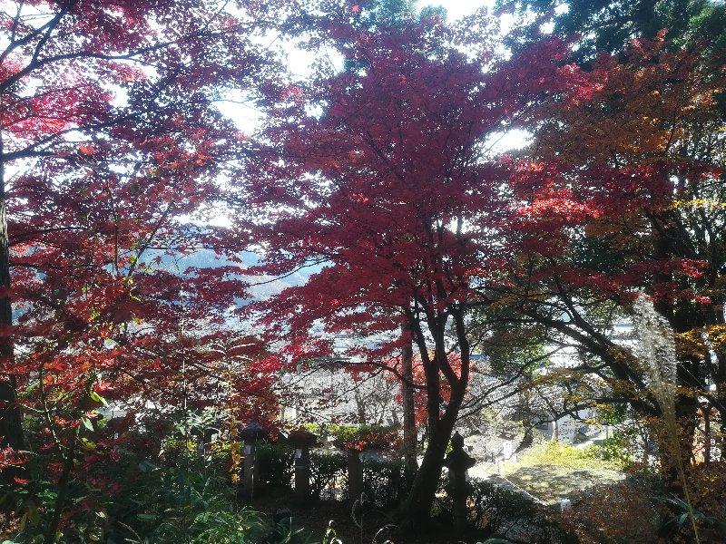 okafuto2-awatabe-016.jpg
