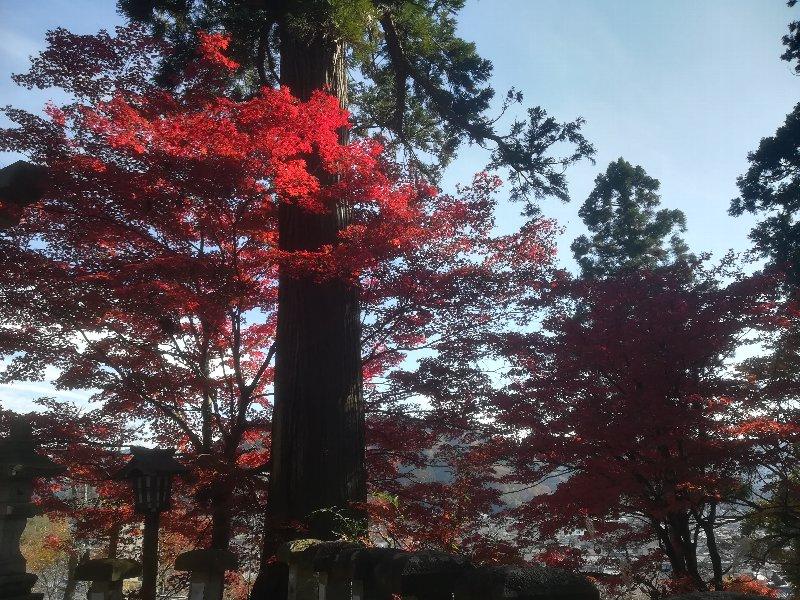 okafuto2-awatabe-018.jpg
