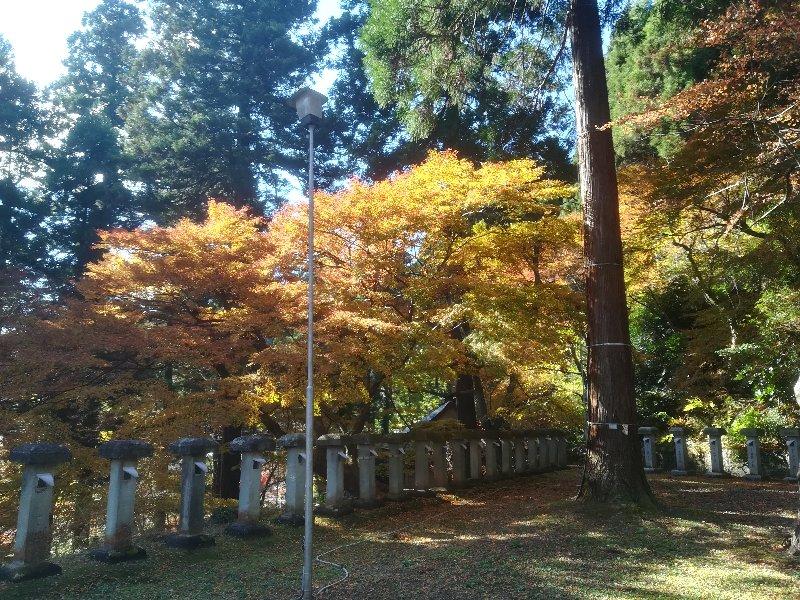 okafuto2-awatabe-022.jpg