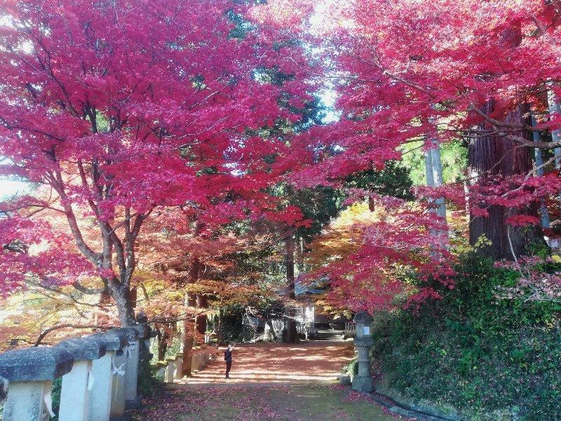 okafuto2-awatabe-026.jpg