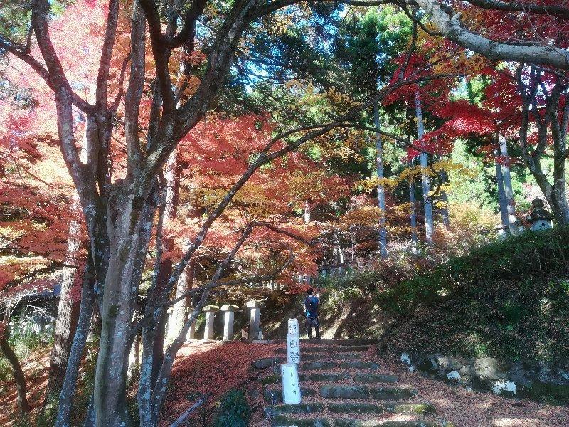 okafuto2-awatabe-029.jpg