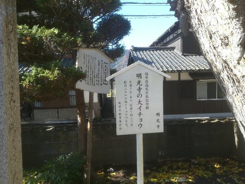 saikouji-sabae-014.jpg