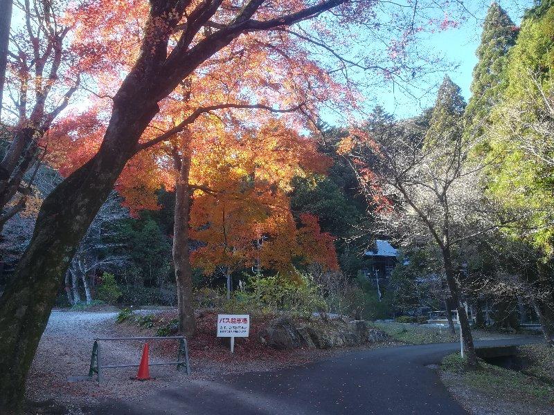 seiryujinjya-maibara-001.jpg