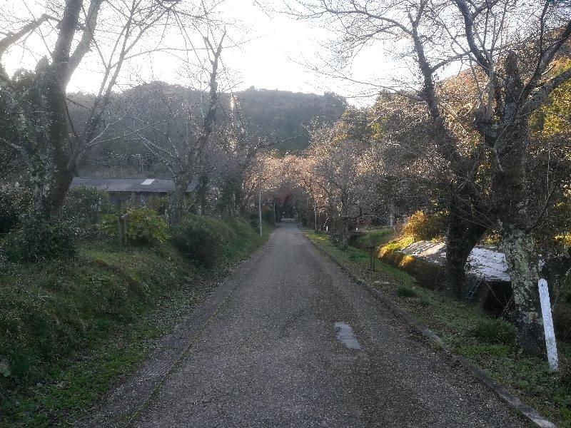 seiryujinjya-maibara-033.jpg