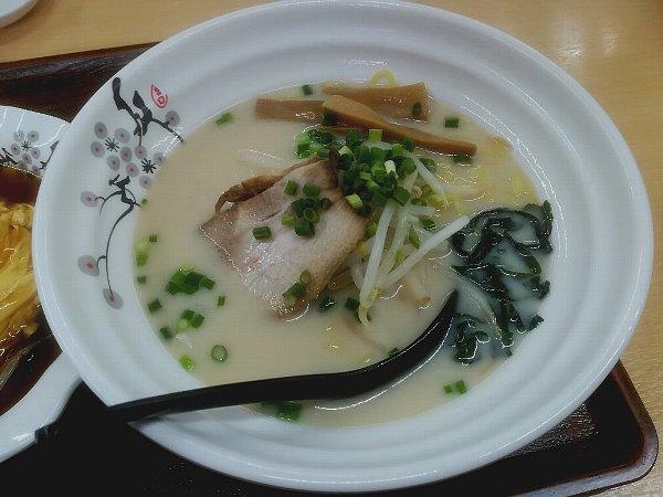 shoryu-tsuruga-024.jpg