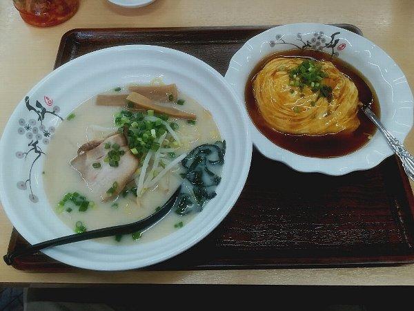 shoryu-tsuruga-027.jpg