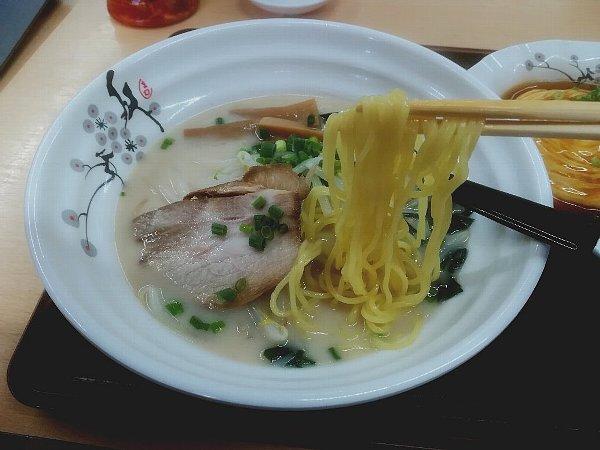 shoryu-tsuruga-029.jpg