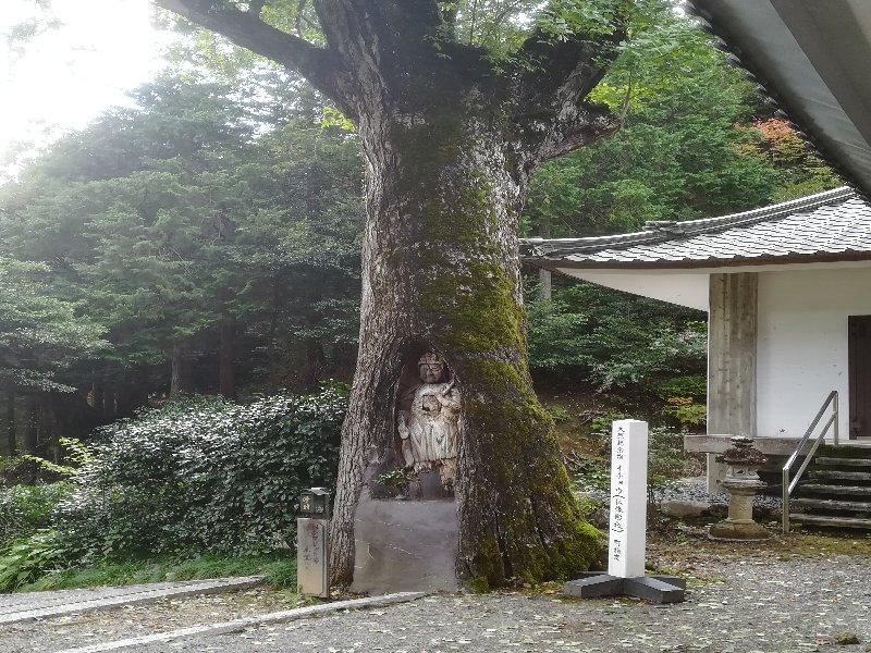 taiouji-wakasa-026.jpg