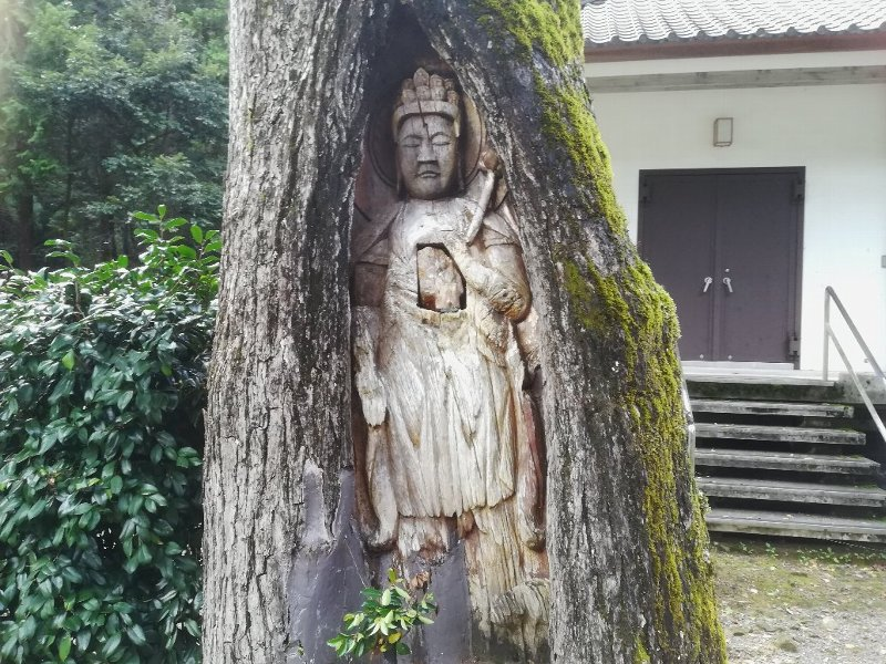 taiouji-wakasa-028.jpg