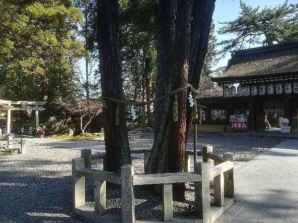takebejinjya-ootsu-032.jpg