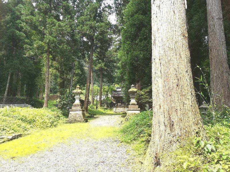 yasakajinjya-asahi-031.jpg