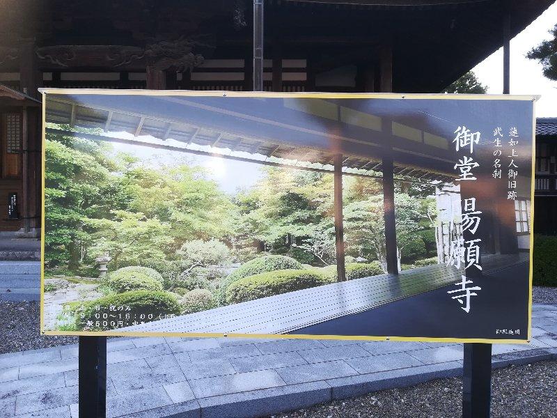 youganji-takefu-017.jpg