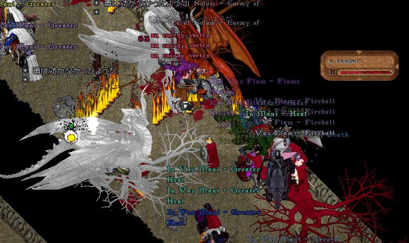 wkkgov200811_05.jpg
