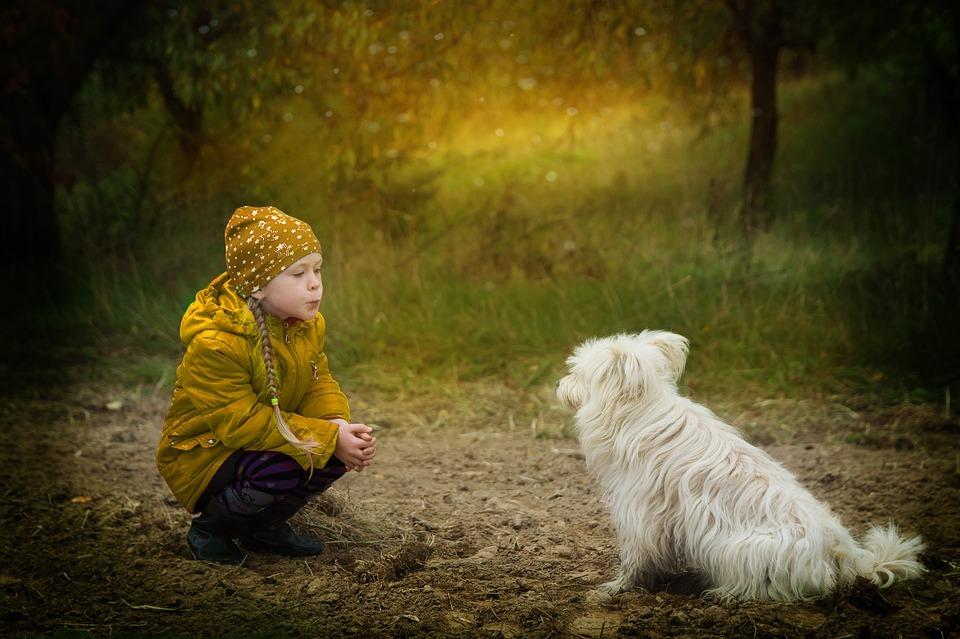 friendship-2939535_960_720[1]