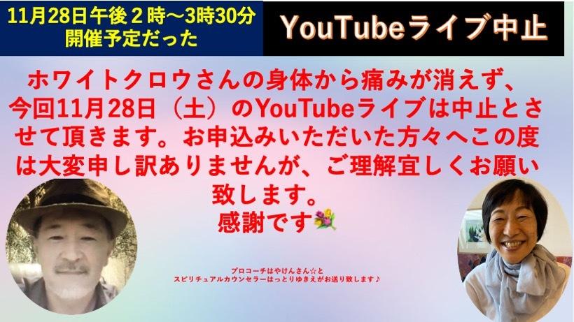 ☆11月28日YouTubeライブキャンセルのご案内☆