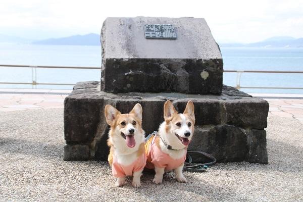 志賀島 2020-3-8-9