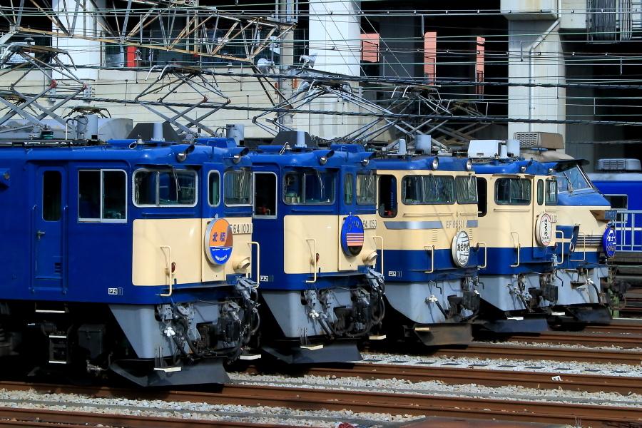 900-EFZZ-181013C1-2.jpg