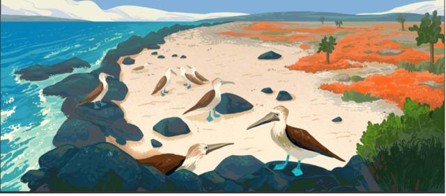 Galápagos Islands4